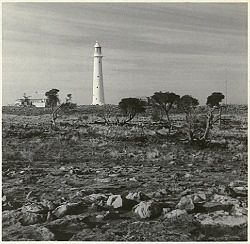 Tasman Island Lighthouse Our House Next To Tower 1967